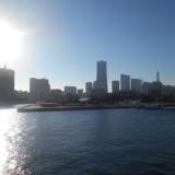 大桟橋 パーティー ホットミール ビュッフェスタイル